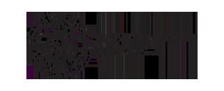 public transpo-logo